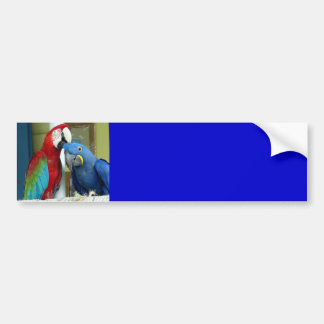 Colorful Red and Blue Macaws Bumper Sticker