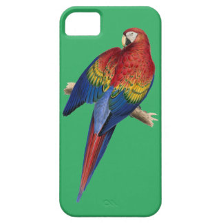 Colorful Red and Yellow Macaw iPhone SE/5/5s Case