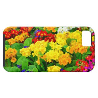 Colorful Red, Yellow, purple White Flowers iPhone SE/5/5s Case