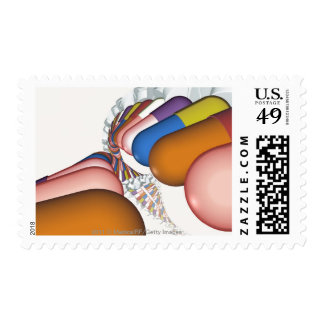 Colorful representation of a DNA strand Postage