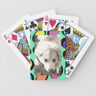 Colorful Retro Frame Create Your Own Gift Template Bicycle Playing Cards