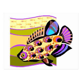 Colorful Retro Tropical Fish Postcard