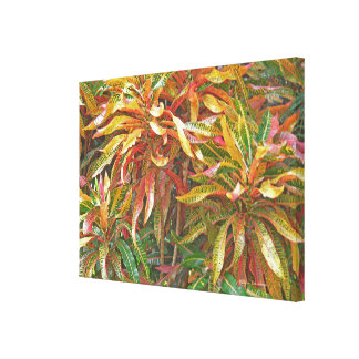 """COLORFUL RIBBON-LIKE LEAVES"" YELLOW/GREEN/SALMON CANVAS PRINT"