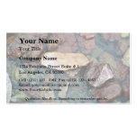 Colorful rocks in stream bed, Running Eagle Falls, Business Card Template