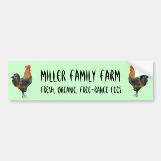 Colorful Roosters Bumper Sticker