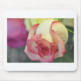 Colorful Rose Mouse Pads