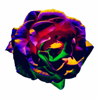 Colorful Rose pin Cutout
