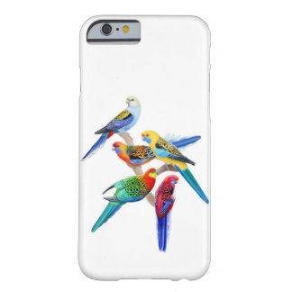 Colorful Rosella Parakeets iPhone 6 Case