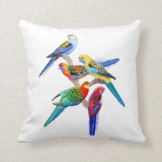 Colorful Rosella Parrots Pillow
