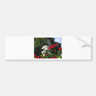 Colorful roses in castle's garden car bumper sticker