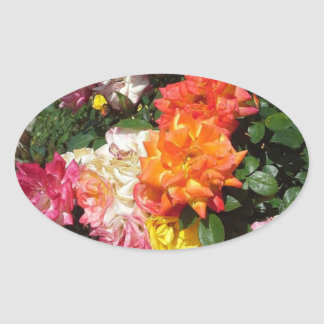 Colorful Roses Oval Sticker