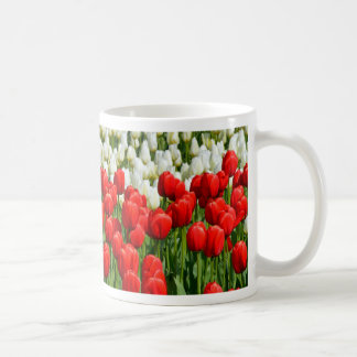 Colorful rows of spring tulips coffee mugs