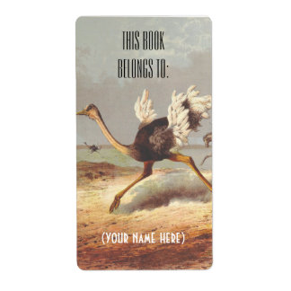 Colorful running ostrich illustration bookplate