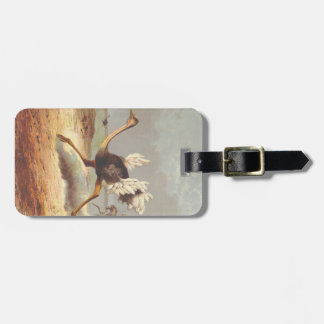 Colorful running ostrich illustration tag tags for bags
