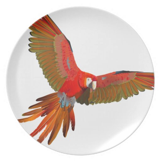 Colorful Scarlet macaw fly art Plates