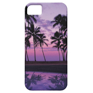 Colorful Scene of Palm Trees at Sunset iPhone 5 Cases
