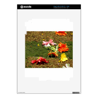 Colorful scenery of forgotten flowers iPad 2 skins