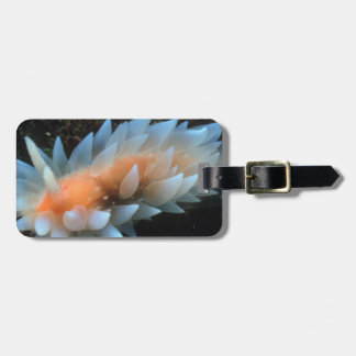 Colorful Sea Slug Sitting On The Surface Bag Tag