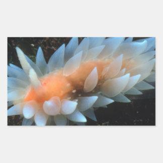 Colorful Sea Slug Sitting On The Surface Rectangular Sticker