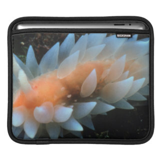 Colorful Sea Slug Sitting On The Surface Sleeve For iPads