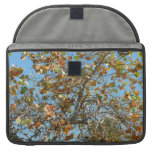 Colorful seagrape tree against blue florida sky MacBook pro sleeve