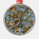 Colorful seagrape tree against blue florida sky ornament
