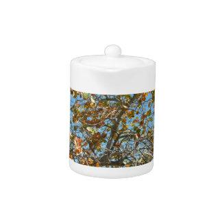 Colorful seagrape tree against blue florida sky teapot