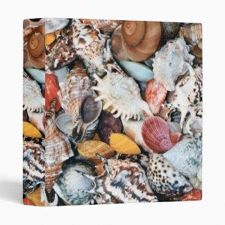 Colorful Seashells 3 Ring Binder
