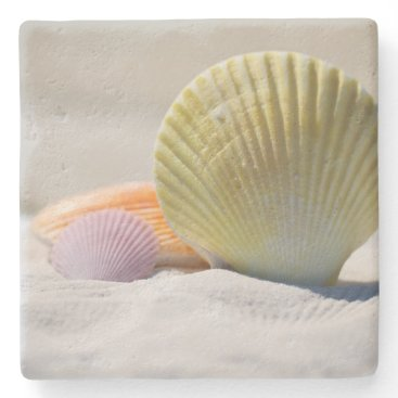 Beach Themed Colorful Seashells in the Sand Stone Coaster