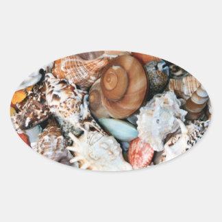 Colorful Seashells Oval Sticker