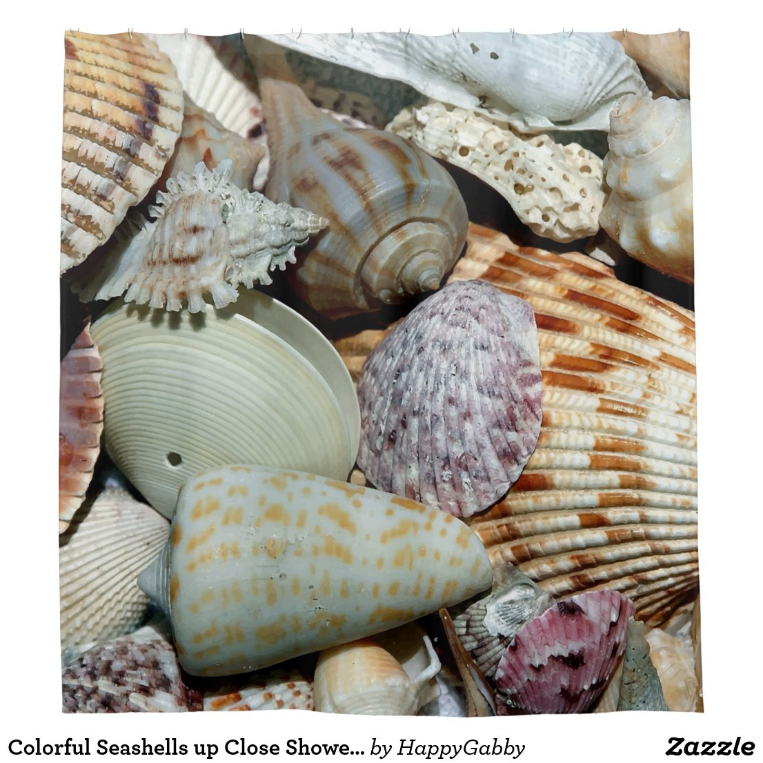 Seashells picture Shower Curtain