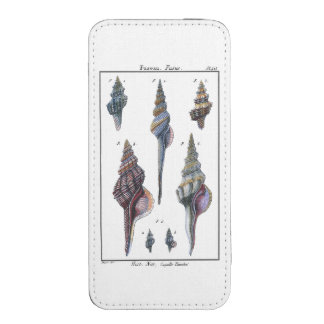 Colorful Seven Seashells iPhone 5 Pouch