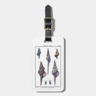 Colorful Seven Seashells Luggage Tag