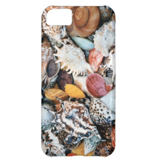 Colorful shells and mussels iPhone 5C cases