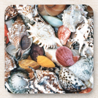 Colorful shells and mussels beverage coasters