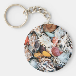 Colorful shells and mussels key chains