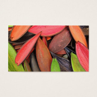 Colorful Shells Nature Harvest Seed Pods Business Card