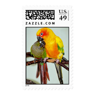 Colorful Shelter Bird Postage Stamps