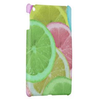 colorful slices of lemon and orange iPad mini covers