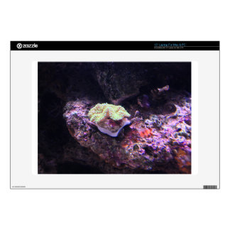 Colorful Soft Coral And Live Rocks Laptop Skin