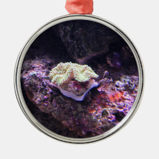 Colorful Soft Coral And Live Rocks Metal Ornament