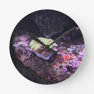 Colorful Soft Coral And Live Rocks Round Clock