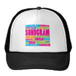 Colorful Sonogram Mesh Hat
