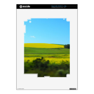 Colorful South Africa iPad 2 Skin