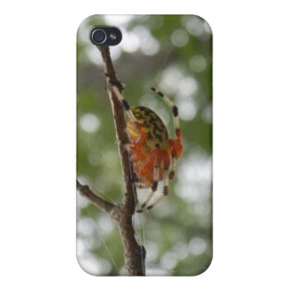 Colorful Spider iPhone 4/4S Cover