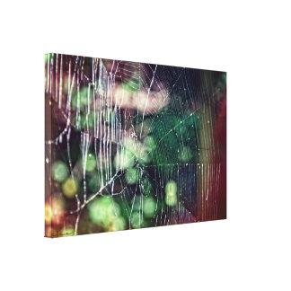 Colorful Spider Web Canvas Wrap #5476
