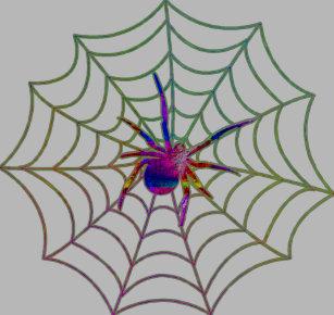 rlv zcache com colorful spider web design t shirt