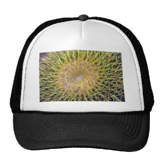 Colorful Spines Trucker Hat