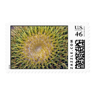 Colorful Spines Postage Stamps