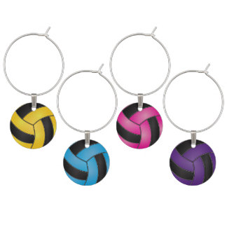 Colorful Sport Volleyballs Wine Glass Charm